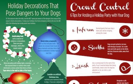 Holiday Dog Safety